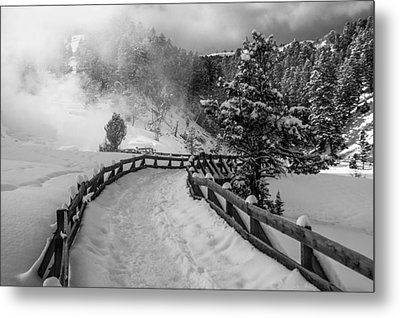 Snow On The Trail Metal Print