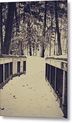 Snow Path Metal Print by Dawdy Imagery