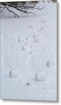 Snow Rollers Metal Print