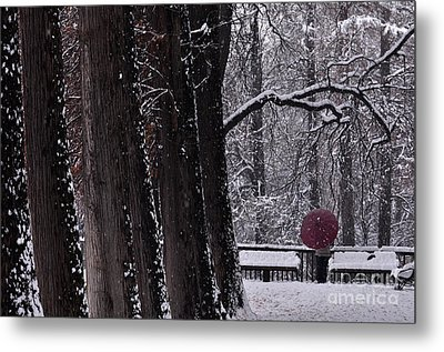 Metal Print featuring the photograph Snow by Simona Ghidini