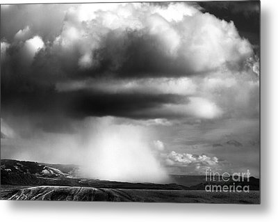 Snow Squall In Black And White Metal Print