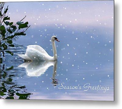 Snow Swan  Metal Print by Jessica Jenney