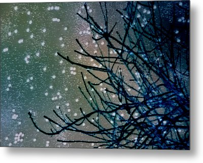 Snow Twigs Metal Print by Jan Amiss Photography