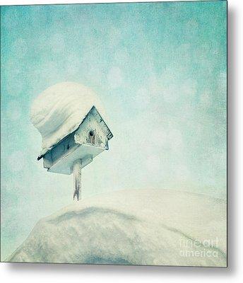 Snowbird's Home Metal Print by Priska Wettstein