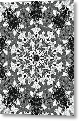 Snowflake Metal Print by Dan Sproul