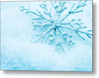Snowflake In Snow Metal Print by Michal Bednarek
