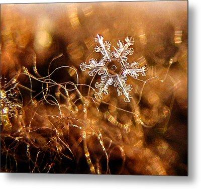 Snowflake On Brown Metal Print
