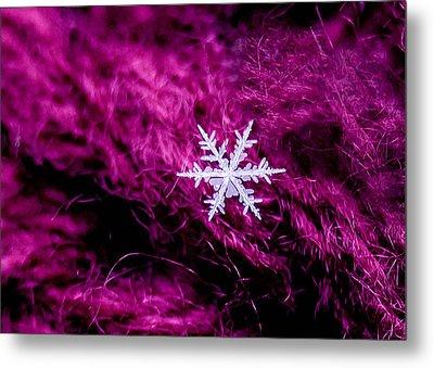 Snowflake On Magenta Metal Print