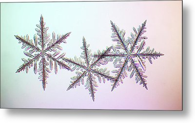 Snowflakes Metal Print by Kenneth Libbrecht