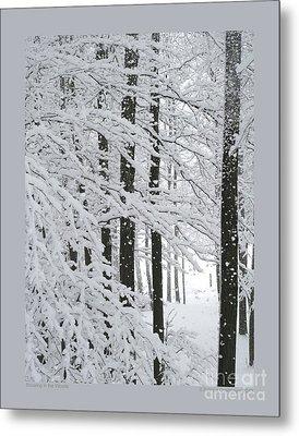 Snowing In The Woods Metal Print