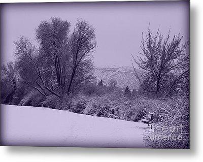 Snowy Bench In Purple Metal Print by Carol Groenen
