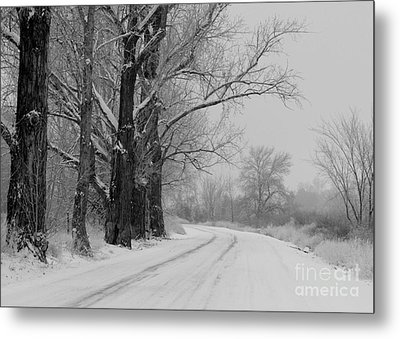 Snowy Country Road - Black And White Metal Print by Carol Groenen