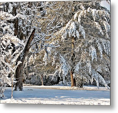 Metal Print featuring the photograph Snowy Day by Linda Brown
