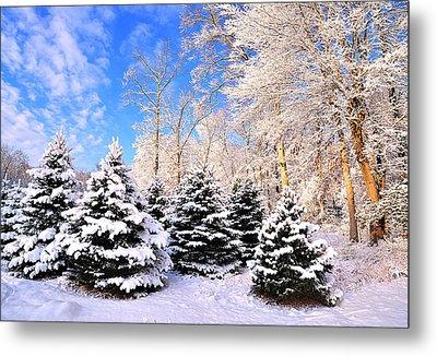 Snowy Dreams Metal Print by Angel Cher