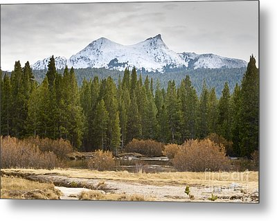Metal Print featuring the photograph Snowy Fall In Yosemite by David Millenheft