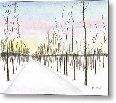 Metal Print featuring the drawing Snowy Lane by Arlene Crafton