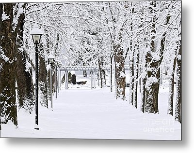 Snowy Lane In Winter Park Metal Print