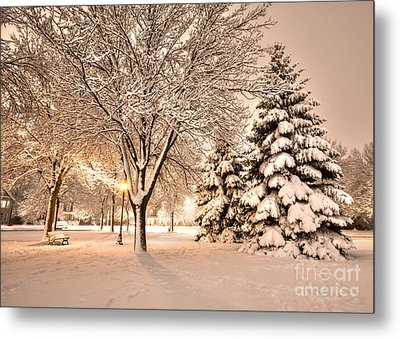 Metal Print featuring the photograph Snowy Night At Windom Park by Kari Yearous