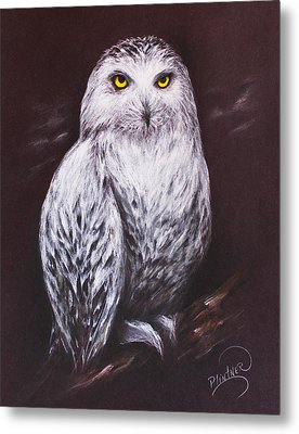 Snowy Owl In The Night Metal Print by Patricia Lintner