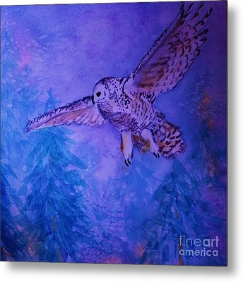 Snowy Owl  - Juvenille - Close Cropped Metal Print by Ellen Levinson