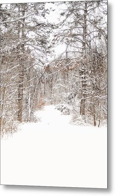 Snowy Path Metal Print by Mary Timman