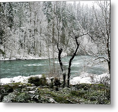 Metal Print featuring the photograph Snowy River And Bank by Belinda Greb