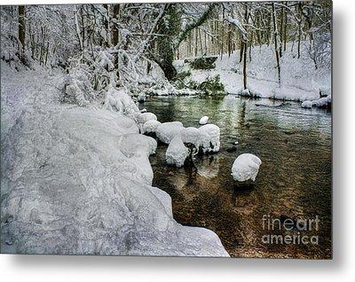 Snowy River Bank Metal Print
