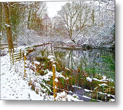 Snowy Rookwood Metal Print by Andrew Middleton