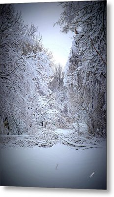 Snowy Scene Metal Print
