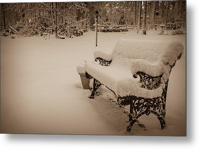 Metal Print featuring the photograph Snowy Sepia by Glenn DiPaola