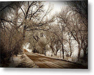Snowy Trail Metal Print by Shirley Heier