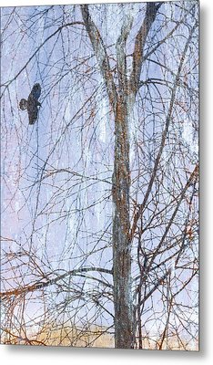 Snowy Tree Metal Print