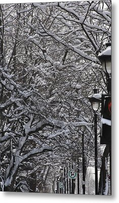 Snowy Way Metal Print by Frederico Borges
