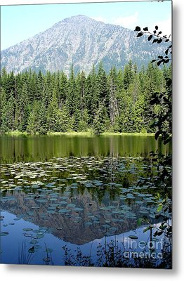 Metal Print featuring the photograph Snyder Lake Reflection by Kerri Mortenson