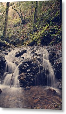 So Easy To Fall Metal Print by Laurie Search