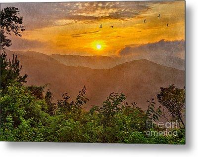 Soaring At Sunrise - Blue Ridge Parkway II Metal Print by Dan Carmichael