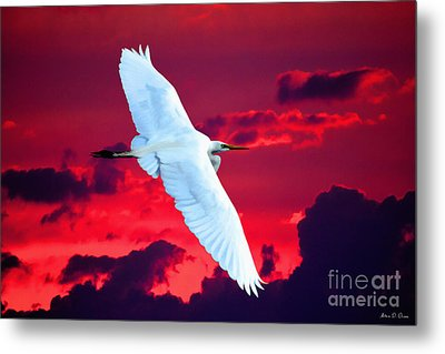 Soaring Heights Metal Print