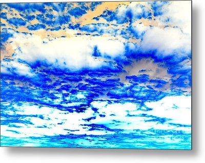 Soaring Sea Metal Print by Christine Ricker Brandt