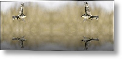 Soaring Souls Fountain Of Youth Metal Print