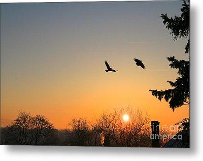 Soaring Sunrise 3 Metal Print by Jay Nodianos