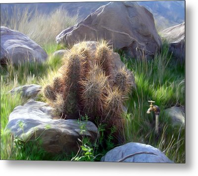 Soft And Sharp Metal Print by Snake Jagger