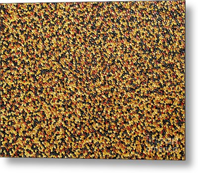 Soft Black With Brown Metal Print by Dean  Triolo