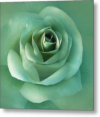 Soft Emerald Green Rose Flower Metal Print by Jennie Marie Schell