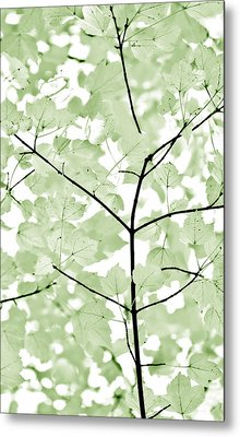 Soft Forest Green Leaves Melody Metal Print by Jennie Marie Schell