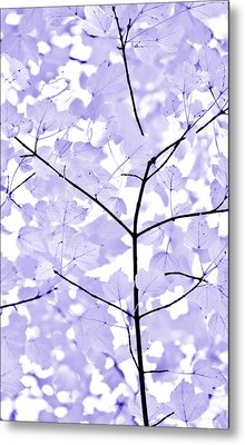 Soft Lavender Leaves Melody Metal Print by Jennie Marie Schell