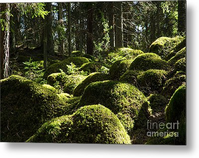 Metal Print featuring the photograph Soft Mossy Rocks by Kennerth and Birgitta Kullman