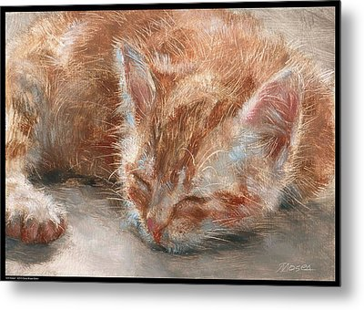 Soft Sleeper Metal Print by Diana Moses Botkin