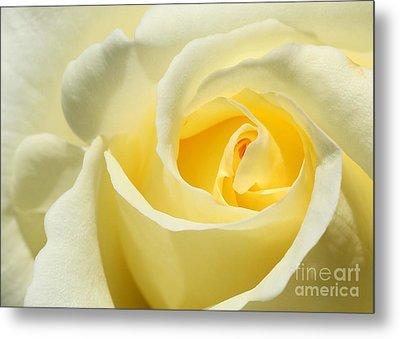 Soft Yellow Rose Metal Print by Sabrina L Ryan