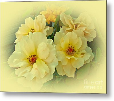 Softly And Sweetly Metal Print by Mother Nature