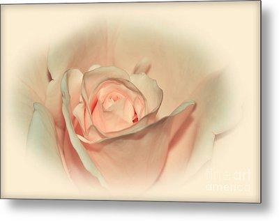 Softly Peach Metal Print by Kaye Menner
